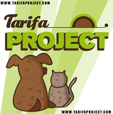 Proyecto Tarifa Project
